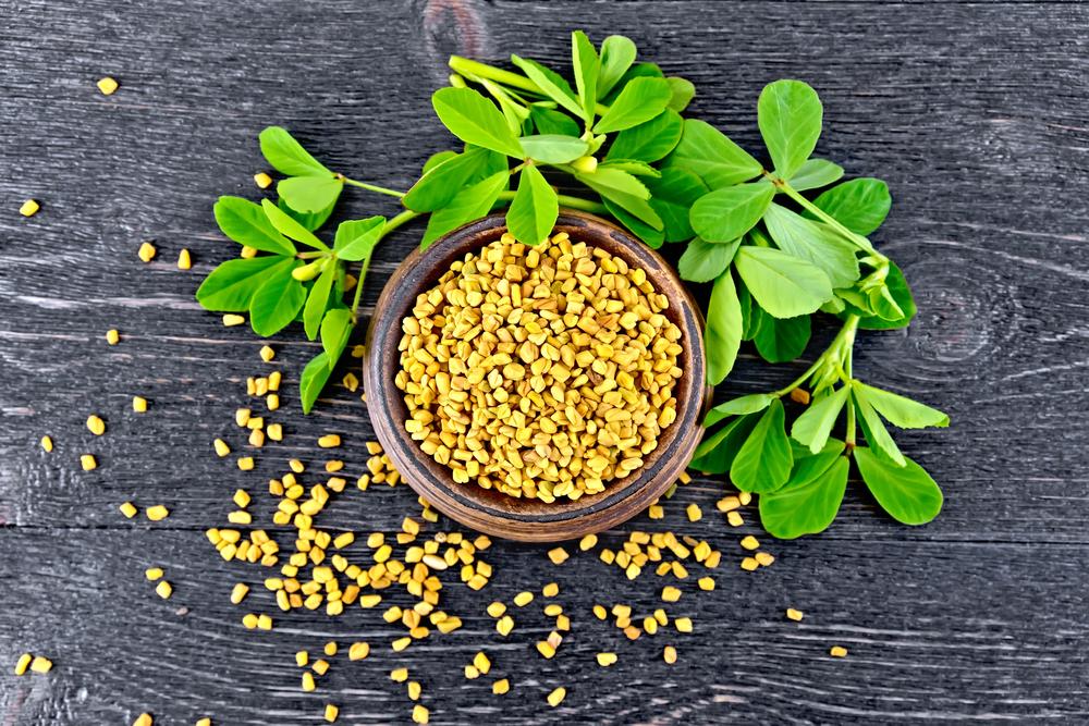 suplemen dan herbal pelancar asi