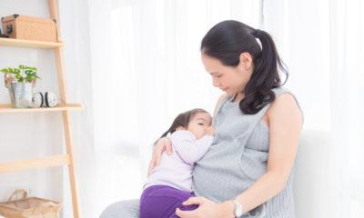menyusui saat hamil bolehkah